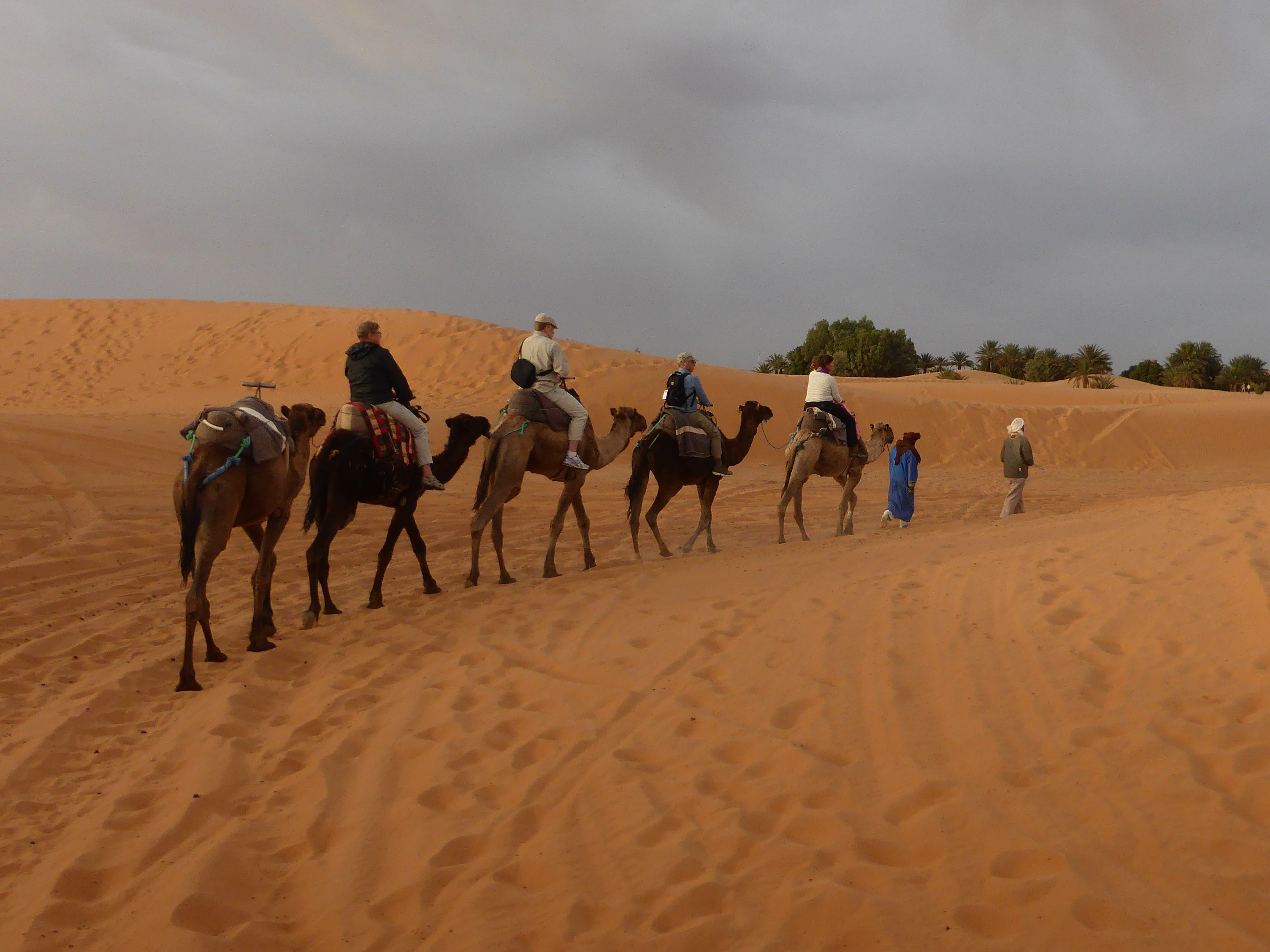 Merzouga ørken