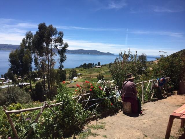En sindig senior skuer ud over Titicacasøen